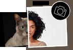 AdoptCam, como funciona Sube una foto tuya