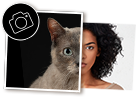 AdoptCam, como funciona Escoge a una de las mascotas