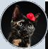 AdoptCam, mascota Raphaela