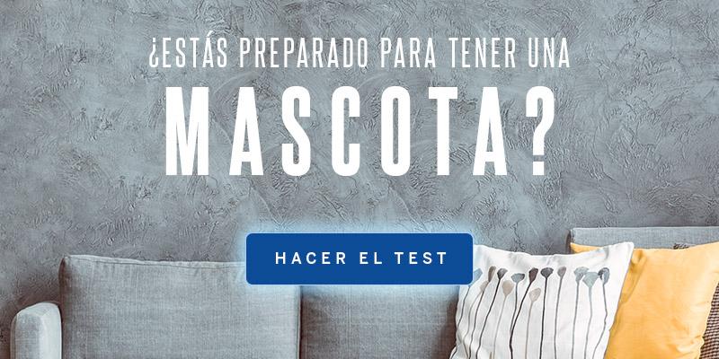 AdoptCam, Test estás preparado para tener mascota