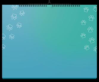 calendario test actual