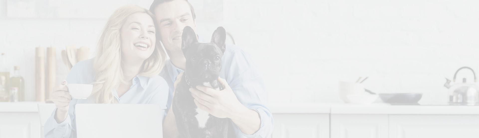 desparasitar perros y gatos