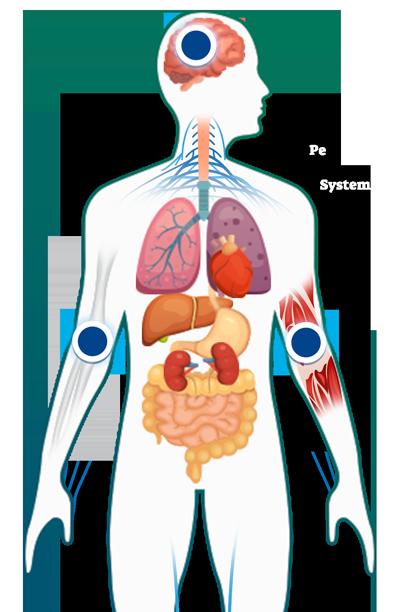 borreliosis o enfermedad de lyme