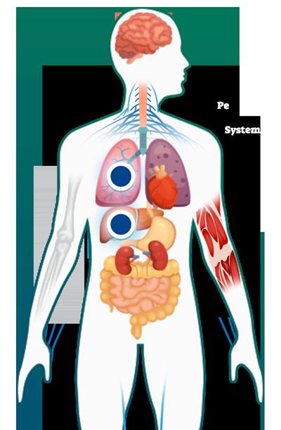 equinococosis