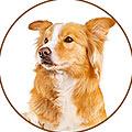 icono mascota